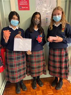 Transition Year Biology - Human Organs project
